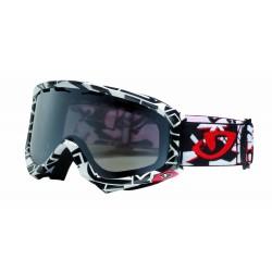 Giro Station Snowboard Ski Goggles